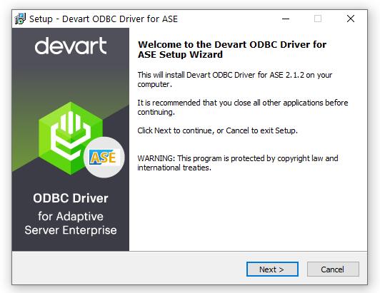 Devart ODBC Driver for SAP Sybase ASE full screenshot