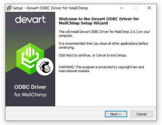 Devart ODBC Driver for MailChimp full screenshot