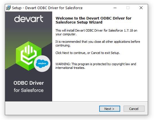 Devart ODBC Driver for Salesforce full screenshot