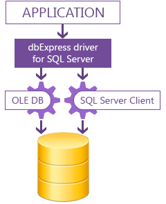 Windows 7 dbExpress driver for SQL Server 8.2 full